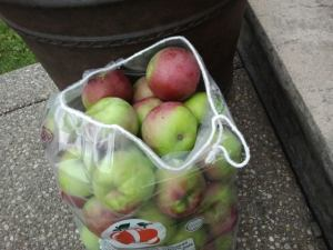 bag apples